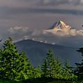 Mt Hood From Grassy Knoll by Albert Seger
