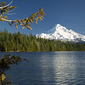 Mt Hood From Lost Lake by Brian Jannsen