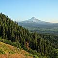 Mt Hood In The Distance by Joe Miller