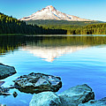 Mt. Hood In Trillium Lake by William Downs