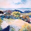 Mt Lemmon View by M Diane Bonaparte