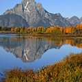 Mt. Moran Fall Reflection  by Sandra Bronstein