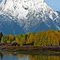 Mt Moran From Ox Bow Bend by Gary Langley