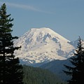 Mt Rainer From The Hills In Packwood Wa  by Jeff Swan