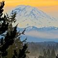 Mt. Rainier #1 by Gena Palm