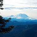 Mt Rainier And Lenticular Cloud by Kenneth Willis