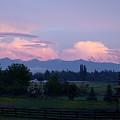 Mt Rainier Blush by Shirley Heyn