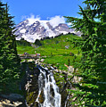 Mt. Rainier From Myrtle Falls by Don Mercer