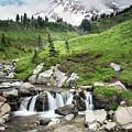 Mt Rainier Paradise Portrait by Lisa Elliott