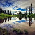 Mt Rainier Reflections by Joan McCool
