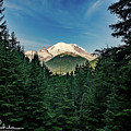 Mt Rainier Through The Trees by Arun Rohila
