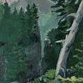 Mt Ranier by Craig Newland