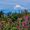 Mt. Redoubt by Claudia Abbott