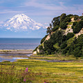 Mt. Redoubt From Ninilchik Beach by Claudia Abbott