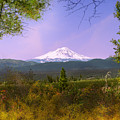 Mt. Shasta by Karen  W Meyer