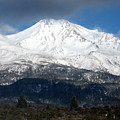 Mt. Shasta Photograph by Kimberly Walker