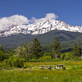 Mt Shasta With Picnic Tables by John Trax