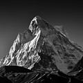 Mt Shivling Above Tapovan by Kedar Munshi