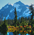 Mt. Shuksan by Idaho Scenic Images Linda Lantzy