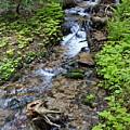 Mt. Spokane Creek 2 by Ben Upham III