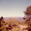Mt Taylor  by Ruth Housley