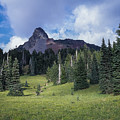 Mt. Washington by Robert Potts