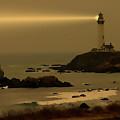Much Needed Light by Barbara Black