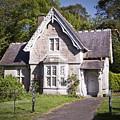 Muckross Cottage Killarney Ireland by Teresa Mucha