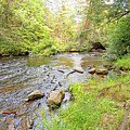 Mud Run, Pennsylvania, Pocono Mountain Stream by A Gurmankin