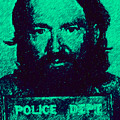 Mugshot Willie Nelson P28 by Wingsdomain Art and Photography
