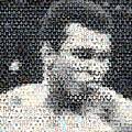 Muhammad Ali Butterfly Bee Mosaic by Paul Van Scott