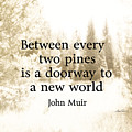Muir Quote On Sepia  by Ann Powell