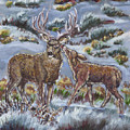 Mule Deer Lovers From River Mural by Dawn Senior-Trask