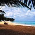 Mullens Beach Barbados by Thomas R Fletcher