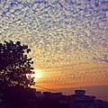 Multicoloured Sky by Atullya N Srivastava