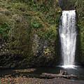 Multnomah Falls 2 by D'Arcy Evans