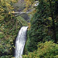 Multnomah Falls 3 by D'Arcy Evans