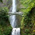 Multnomah Falls by Cordelia Ford