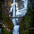 Multnomah Falls Frozen by Mike Penney
