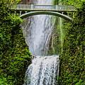 Multnomah Falls In May by Dale Kauzlaric