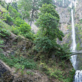 Multnomah Falls In The Columbia River Gorge In Oregon Dsc6515 by Wingsdomain Art and Photography