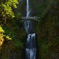 Multnomah Falls by Walt Sterneman