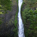 Multnomah Falls Wf1039 by Mary Gaines