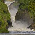 Murchison Falls, Uganda by Gordon Longmead