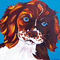 Murphy by Susan Szabo