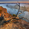 Murray River Dawn by Bill  Robinson