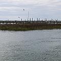 Murrells Inlet Marsh Walk by MM Anderson
