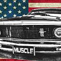 Muscle Us Mustang by Benjamin Dupont