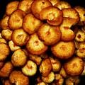 Mushroom Hug by Beverly Hammond