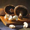 Mushrooms by Robert Papp